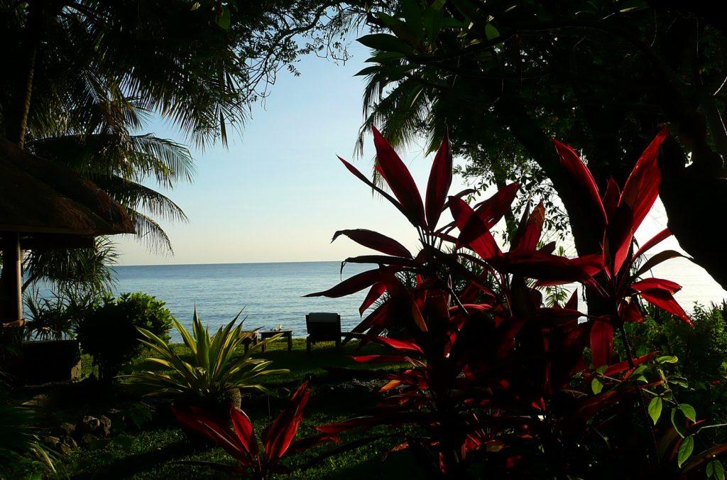 Tropischer Garten am Meer