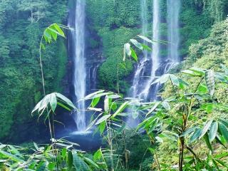 Sekumpul Wasserfall