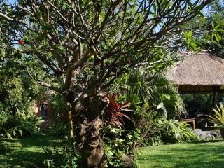 Bungalow im tropischen Garten
